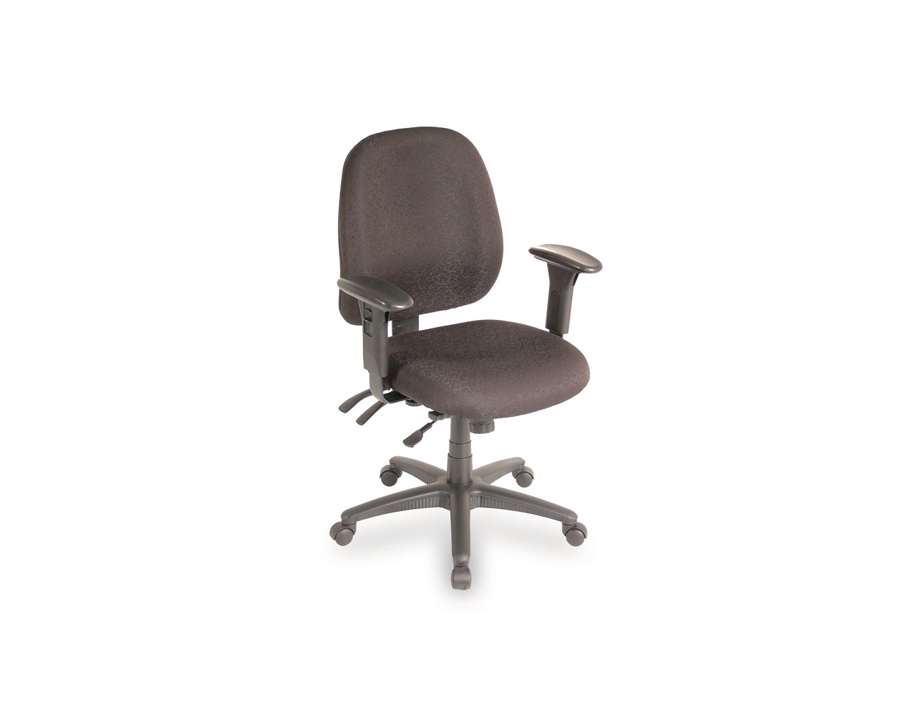 Ergo Form Multi-Function Chair