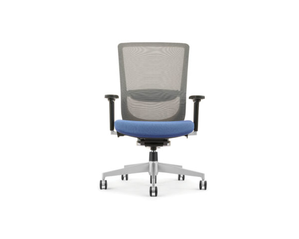Dionne Mid Back Mesh Chair