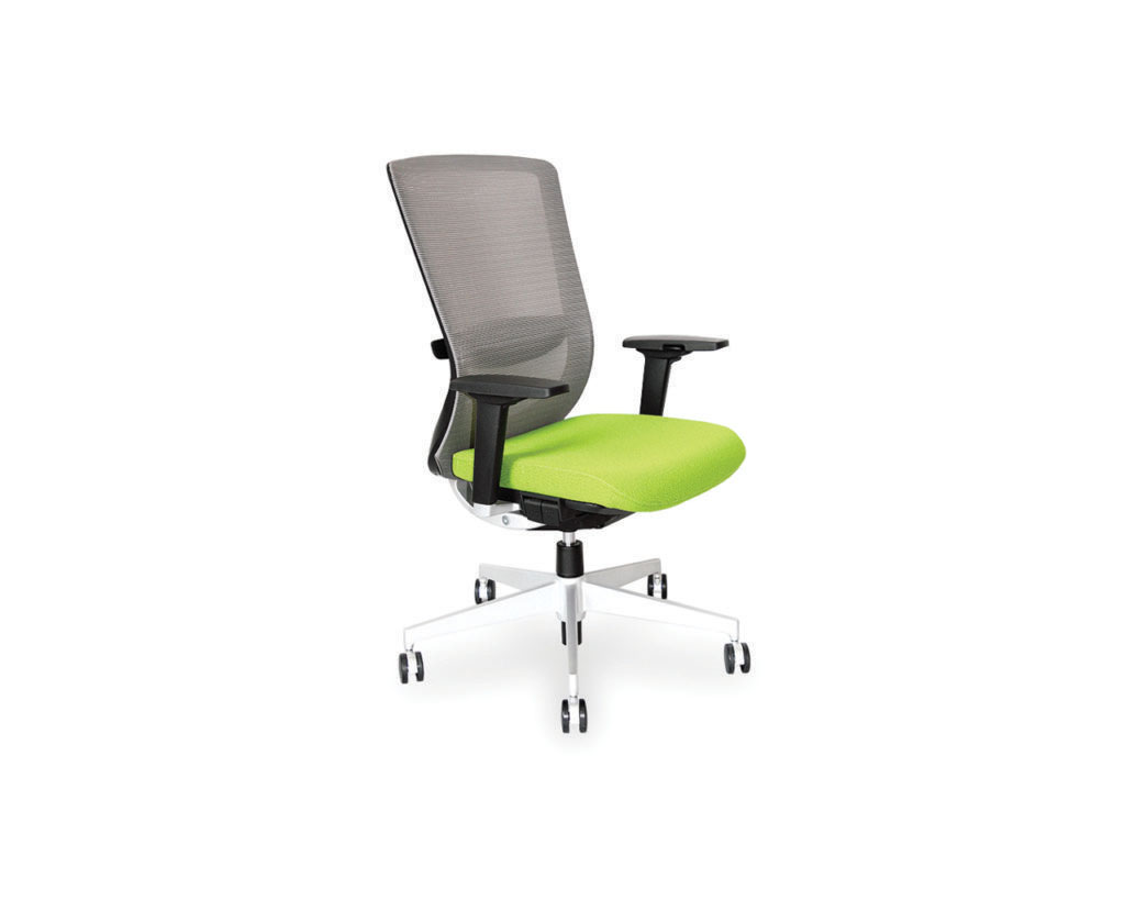 Dionne Mesh Mid Back Chair