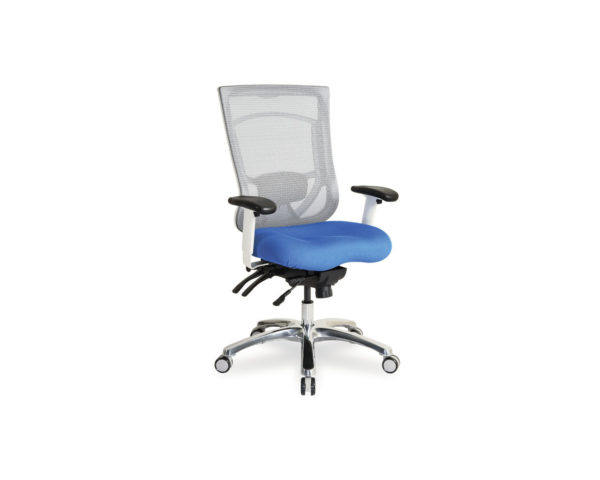 CoolMesh Pro Plus High Back Chair