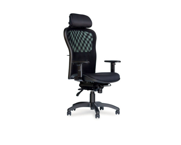 Enduro High Back With Optional Headrest