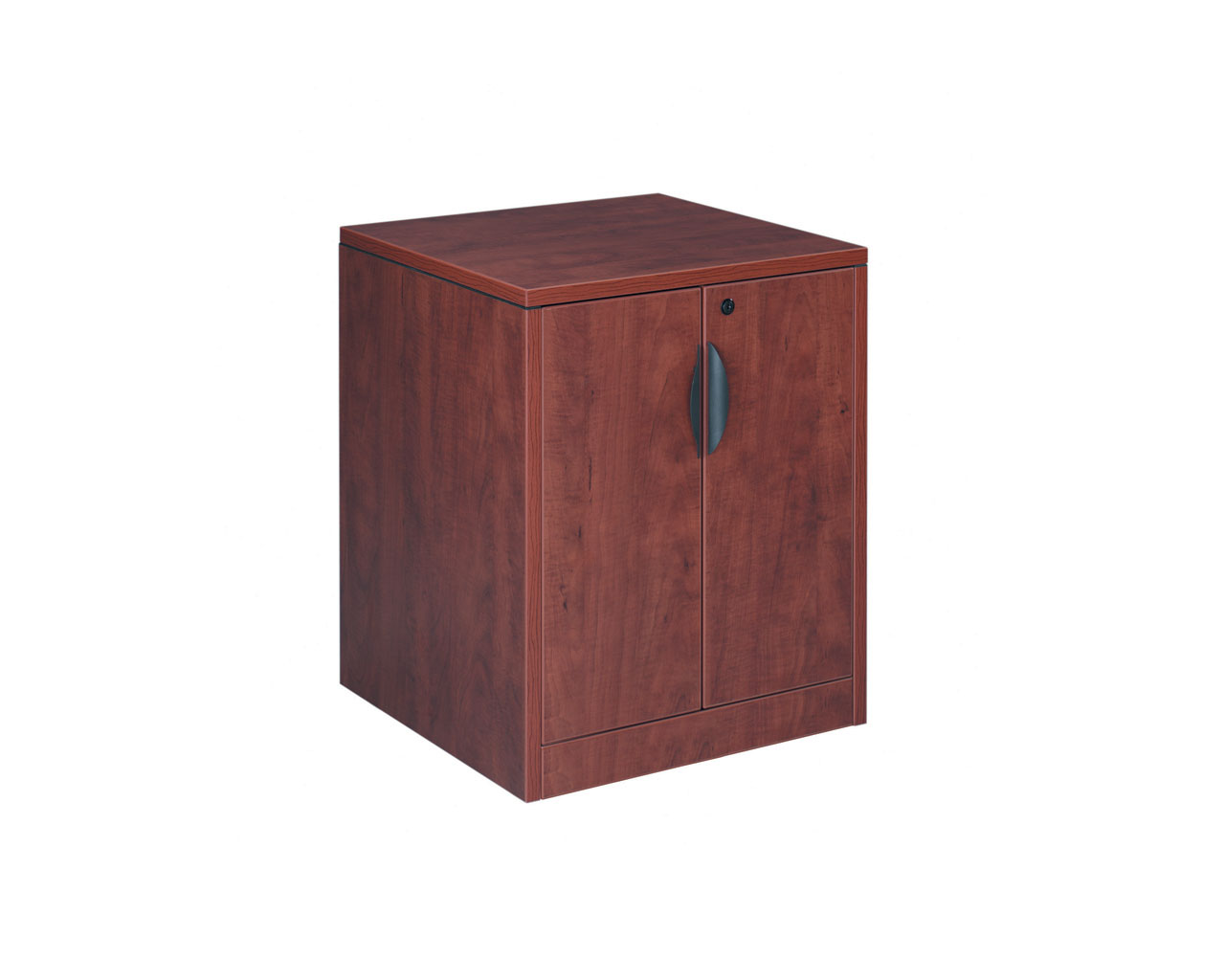 Mobile Locking Double Door Cabinet