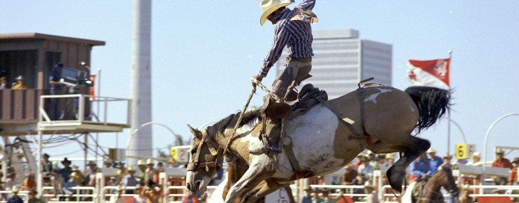 Celebrate the Calgary Stampede with Source